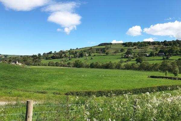 Nidderdale View